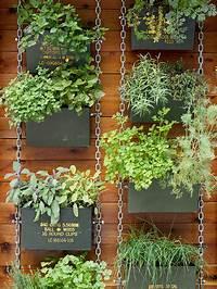 vertical gardening ideas Vertical Garden Ideas