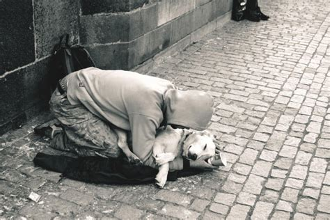 heartwarming photographs  homeless people