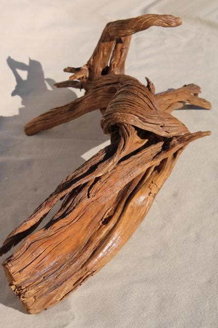 natural driftwood  large interesting shapes bent twisted wood pieces  art display