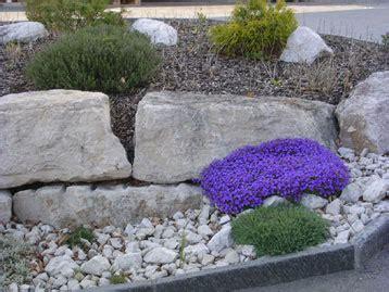 Pflanzen Für Steingarten Immergrün by Karpf Garten Steing 228 Rten