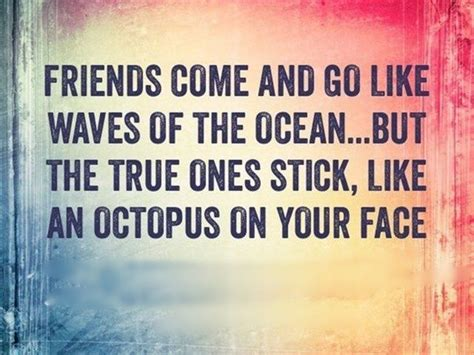 dumbass  friends quotes  pictures lol great