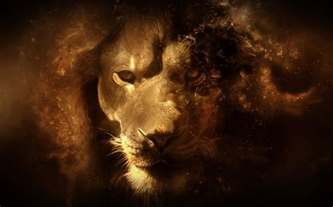 Cool Lion Wallpapers (69+ images)