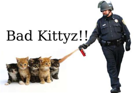 Pepper Spray Cop Meme - pepper spraying cop and the power of an image sociological images