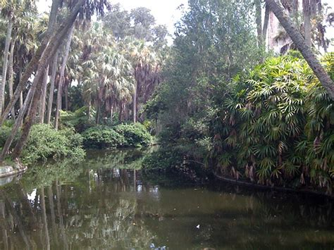 Florida Scenery  Flickr  Photo Sharing
