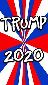 Trump 2020 wallpaper by Winstonsmom - 07 - Free on ZEDGE™