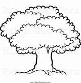 Tree Canopy Mature Clipart Lush Perera Lal sketch template