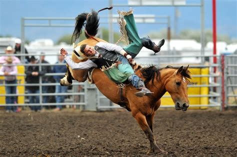 Gallery: Last Chance Stampede Rodeo Day 2 | Rodeo ...