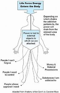 Body  Mind And Soul Balance  The Body