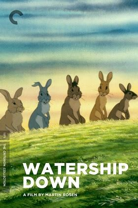 'Watership Down' may be joining Criterion Collection | flayrah