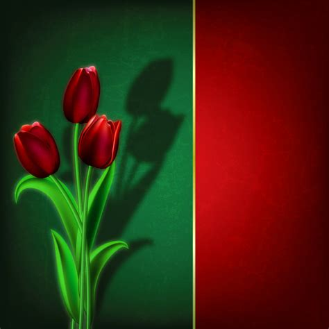 tulips green  red background gallery yopriceville