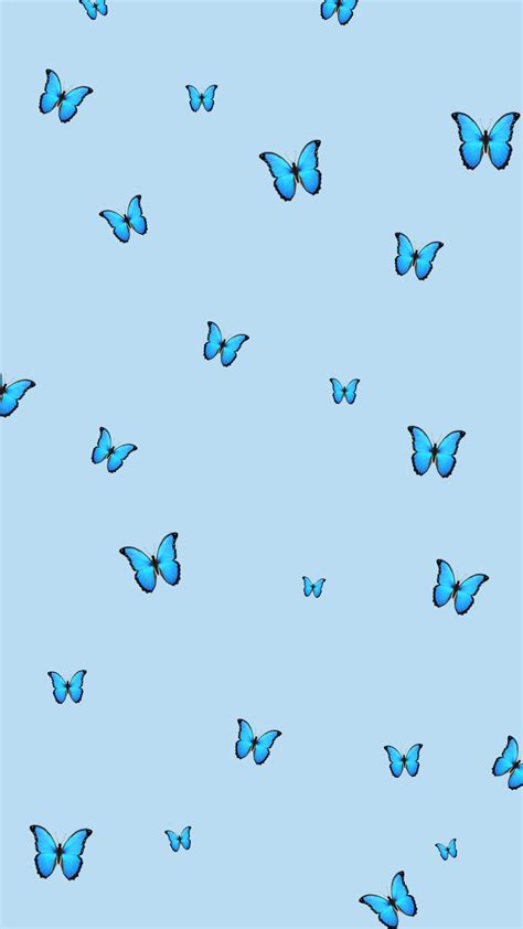 blue butterfly wallpaper aesthetic with white background