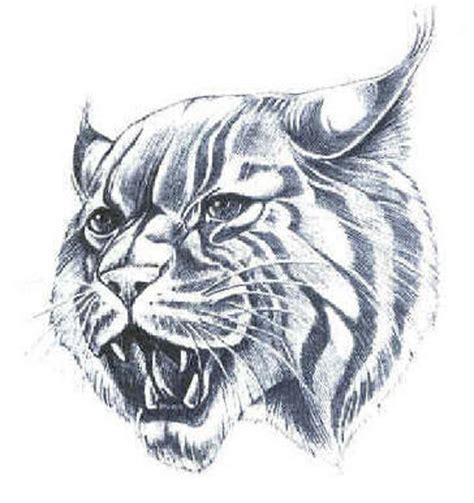 wildcat mascots  vector clip art  clip art images