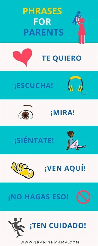 Spanish Common Words Verbs Phrases Lists Printable