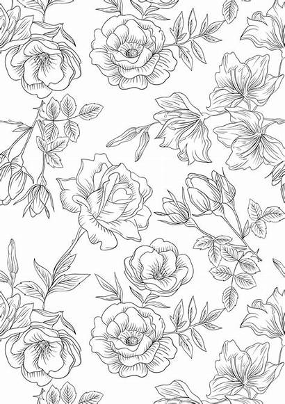 Coloring Adult Printable Adults Nature Colouring Floral