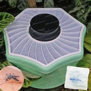 Anti Moustique Exterieur Efficace : anti moustique efficace exterieur ~ Dode.kayakingforconservation.com Idées de Décoration
