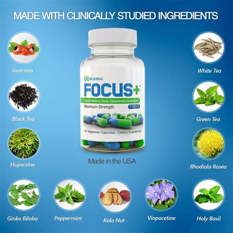 brain care capsule focus by excelerol supports memory focus