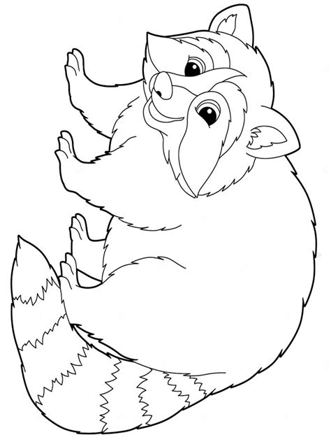 raccoon coloring pages   print raccoon