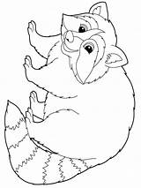 Raccoon Coloring Pages Animal Animals Print Colors Recommended sketch template