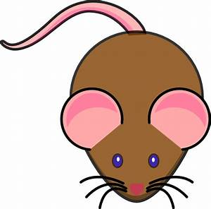 How To Draw A Simple Mouse - ClipArt Best