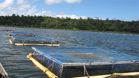 chief applauds latest aquaculture techniques agri