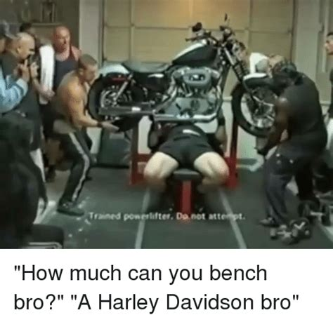how much you bench trained powerlifter do not att how much can you bench bro