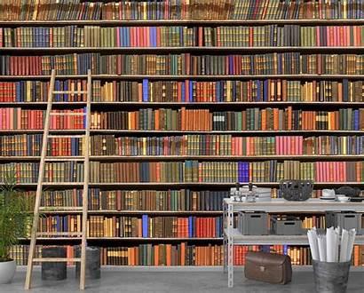 Library Books Muralunique