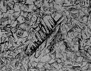 Microstructure of Ferrous Alloys