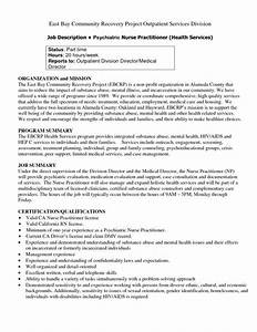 best 25 registered nurse job description ideas on With sample resume for staff nurse position