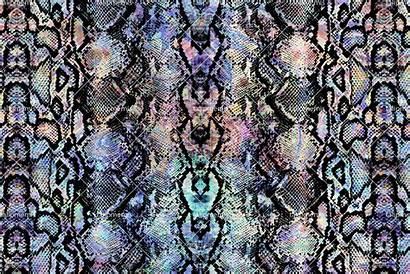 Snake Skin Pattern Patterns Seamless Creativemarket Colorful