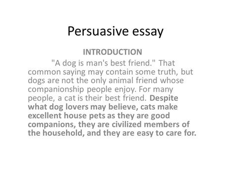dogs better cats essay pets essays opinion which spaying neutering dog