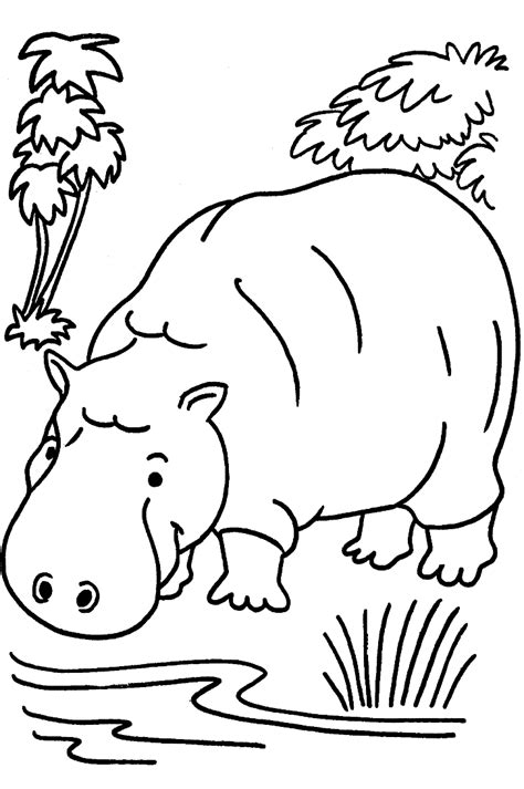 coloring pages animals jungle animals coloring pages