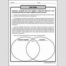 4th Grade Compare And Contrast Worksheets Worksheets For All  Free Worksheets Samples