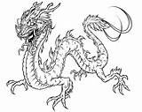 Dragon Coloring Pages Printable Print Adult Odd Dr sketch template