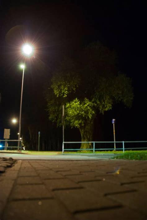 Trauslais vītols - Salaspils tūrisma portāls