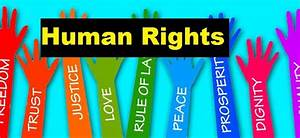 Human rights violation essay respect for law and order essay do your homework video paid essay writers