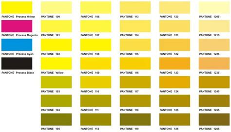 Golden Colour Chart by Color Chart