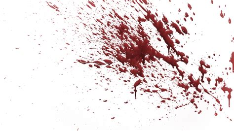 what is the real color of blood real blood splatter images search