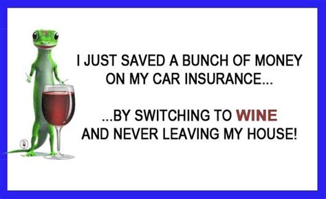 Funny Wine Memes - geico gecko wine funny meme thumb