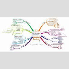 Imindmap English Grammar  Parts Of Speech Mind Map Biggerplate
