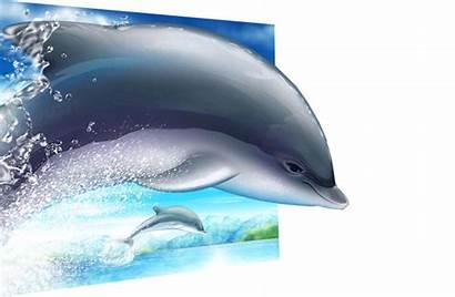Delfines Delfin Animado Gifs Animados Foro Animales