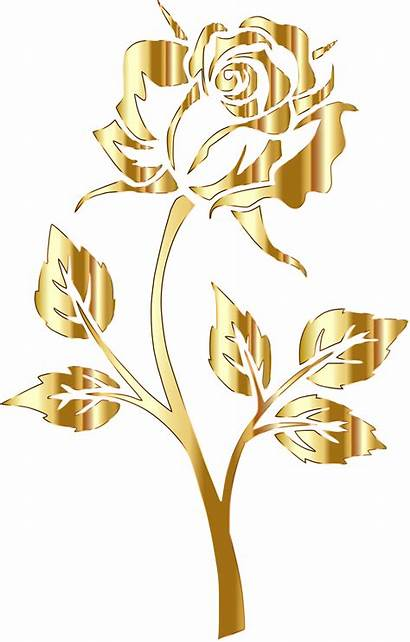 Gold Clipart Rose Flowers Yellow Transparent Roses