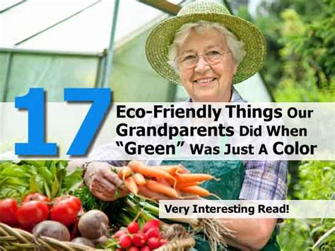 """17 Eco-friendly Things Our Grandparents Did When """"green"""