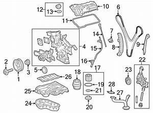 Toyota Avalon Engine Timing Chain Guide  Axxxxxx  Cxxxxxx