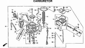 Honda Rancher 350 Carburetor Hose Diagram