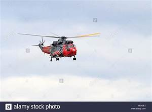 Royal Navy Seaking Search and Rescue helicopter performing ...