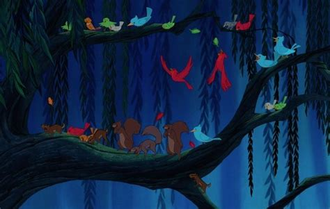 Image Woodland creatures gather on a branch in