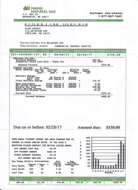 utility bill statement monthly custom proof