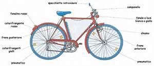 Cosa deve avere una bicicletta educazione legalita