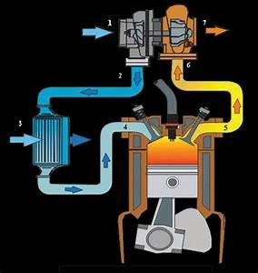 Diesel Performance Kft