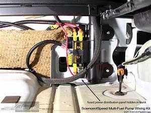 Scienceofspeed Fuel Pump Complete Easy Wiring Kits